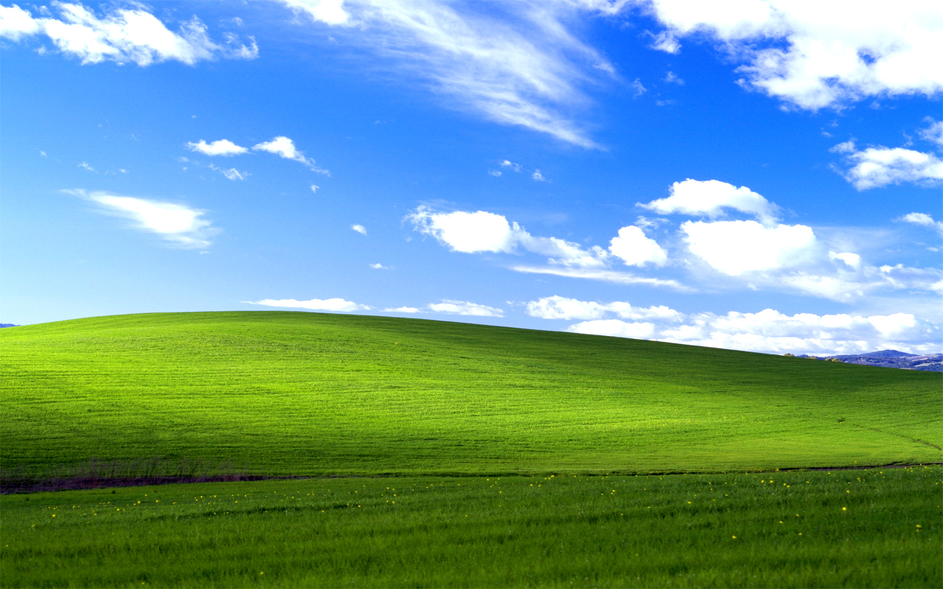"The History Behind Microsoft XP's ""Bliss"" Background"
