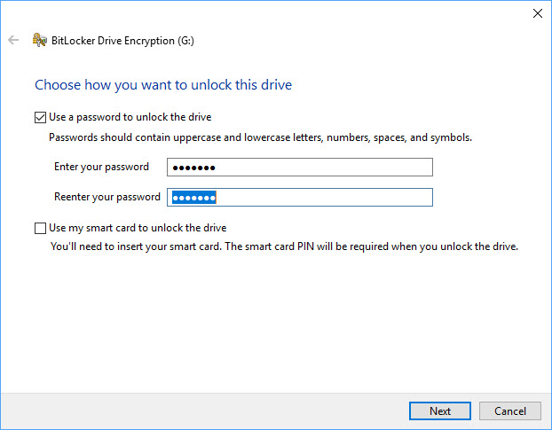Secure Storage Solutions: BitLocker to Go and MacOS