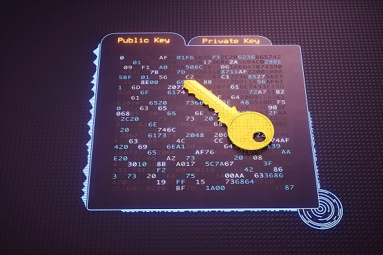 A digital interface showing a folder with cryptographic hash data written in hexadecimal computer code. A golden pixelated key is lying on it. This image represents a conceptual design in the domain of IT, cyberspace, cyber security, global communications or similar industry sectors. The image is a made up 3D concept render.