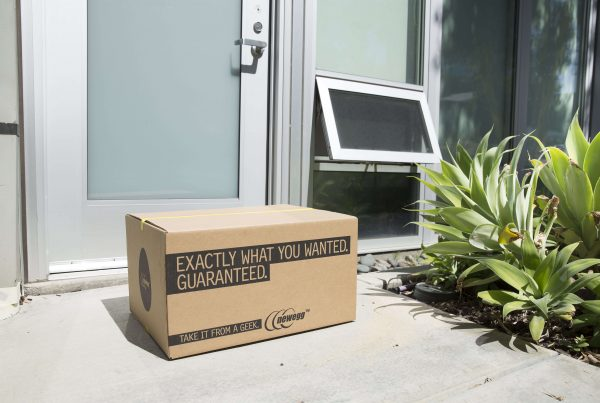 shipped-by-newegg-fulfillment-service-case-study