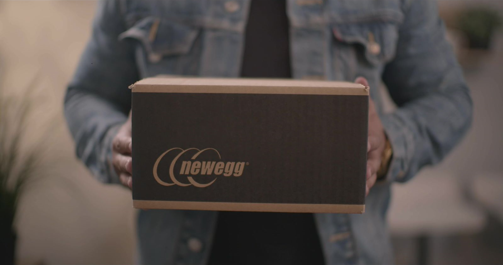 Newegg fulfillment services like Shipped by Newegg (SBN) and Newegg Logistics offer retailers cost-saving options.